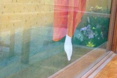/// 朝野家の秘密「あのねのね」 猩々緋の巻 ///_f0112434_19192087.jpg