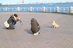 カメラ日和学校 横浜撮影会レポート(2/9)_b0043961_23193451.jpg
