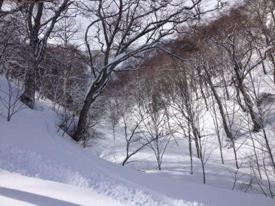 最高すぎる一日☆ 苗場スキー場_c0151965_9543745.jpg