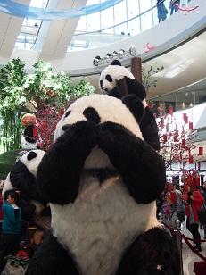 ifc mallのパンダ_d0088196_1038527.jpg
