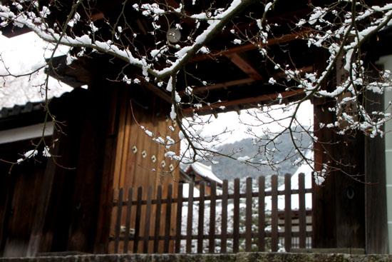 曼殊院 雪化粧_e0048413_19485184.jpg