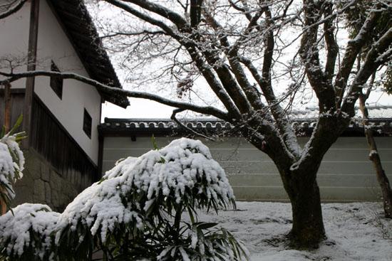 曼殊院 雪化粧_e0048413_19491625.jpg