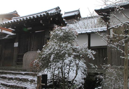 曼殊院 雪化粧_e0048413_1949238.jpg