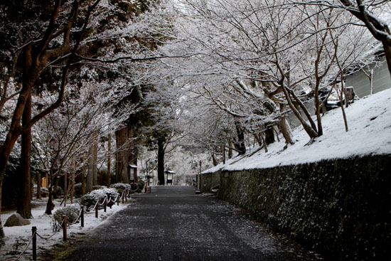曼殊院 雪化粧_e0048413_19495826.jpg