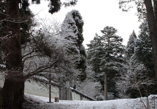 曼殊院 雪化粧_e0048413_19501144.jpg