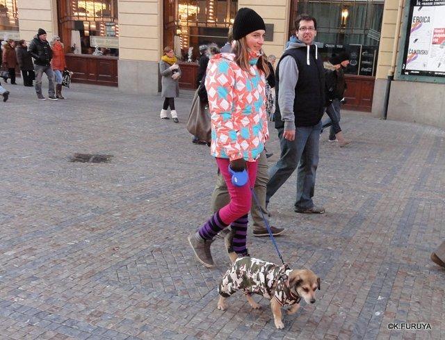 プラハ 12 街歩きいろいろ♪_a0092659_22445513.jpg
