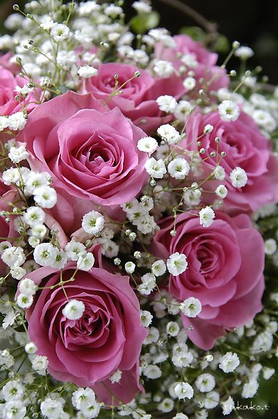 バラの花束♪_c0070460_15581755.jpg