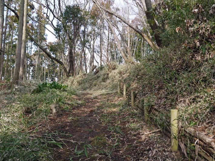 予想遙かに上回る倒木、枯れ木:2・16六国見山定例手入れ_c0014967_10271658.jpg
