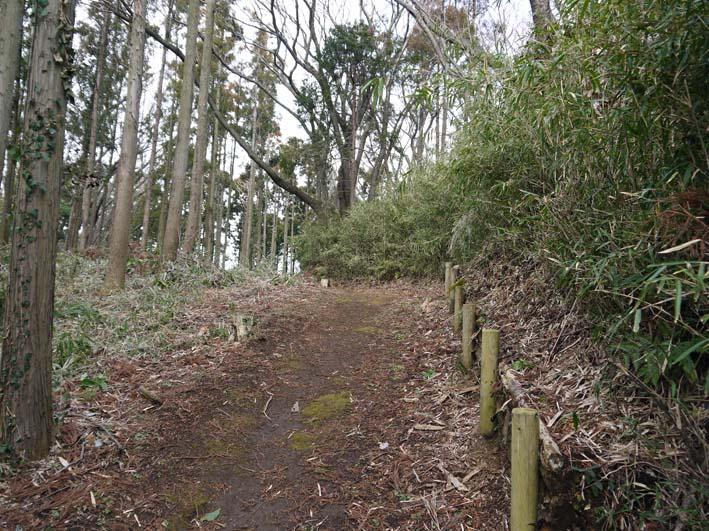 予想遙かに上回る倒木、枯れ木:2・16六国見山定例手入れ_c0014967_10274071.jpg