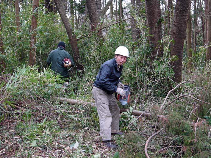 予想遙かに上回る倒木、枯れ木:2・16六国見山定例手入れ_c0014967_10345879.jpg