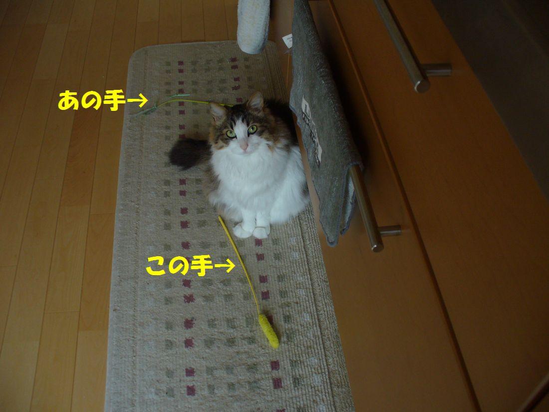 f0217971_22362111.jpg