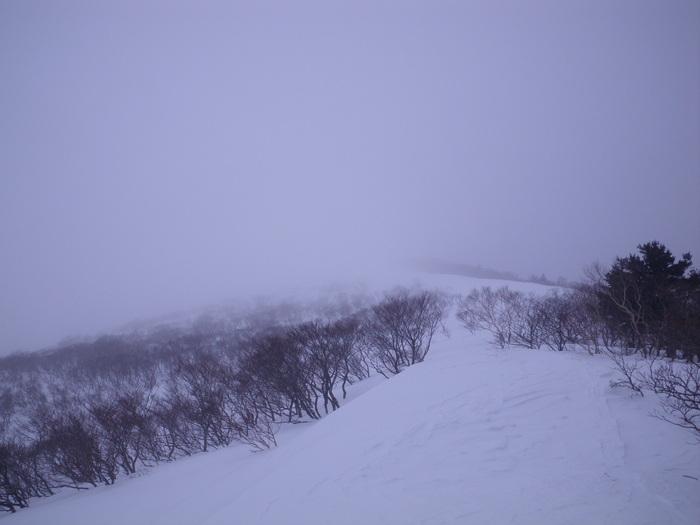 朝駆けで登る南蔵王不忘山 ~ 2013年2月18日_f0170180_1355574.jpg