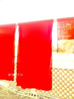布洗い・赤編_a0283484_8541437.jpg