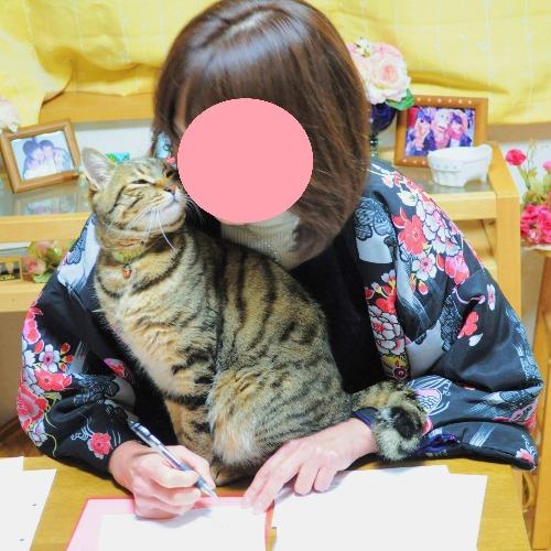 くっつき猫_a0126590_0224835.jpg