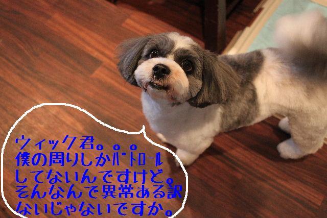b0130018_22425629.jpg