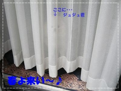 b0167519_16482617.jpg