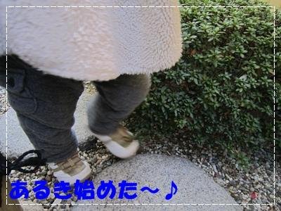 b0167519_164936.jpg