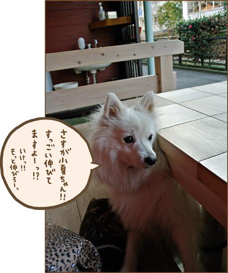 d0212419_2161767.jpg