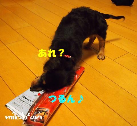 b0115642_226613.jpg