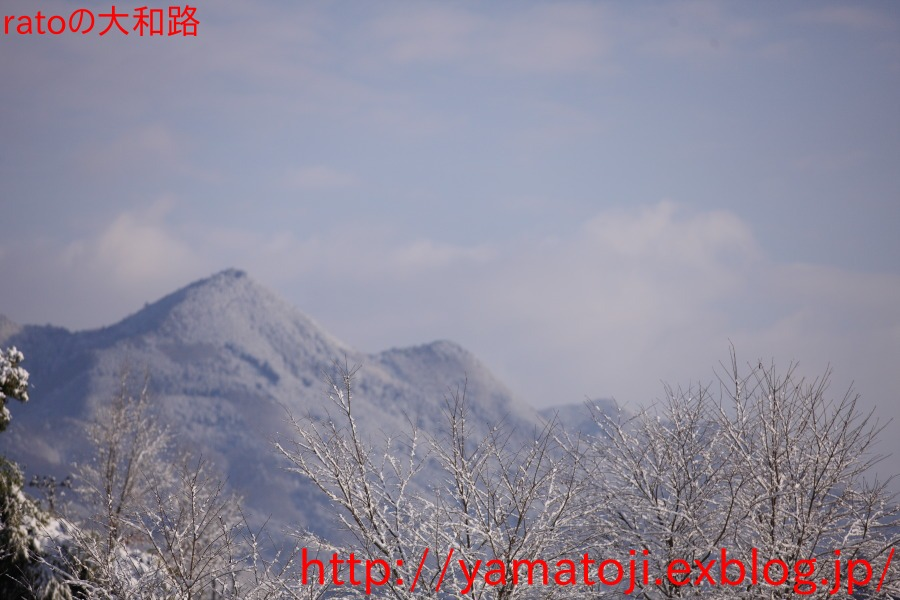 f0236776_1528899.jpg
