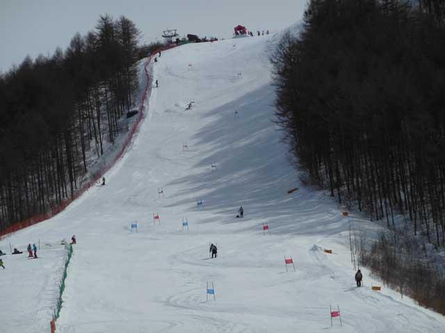 日曜に雪遊びに行ってきました_b0120492_14533010.jpg