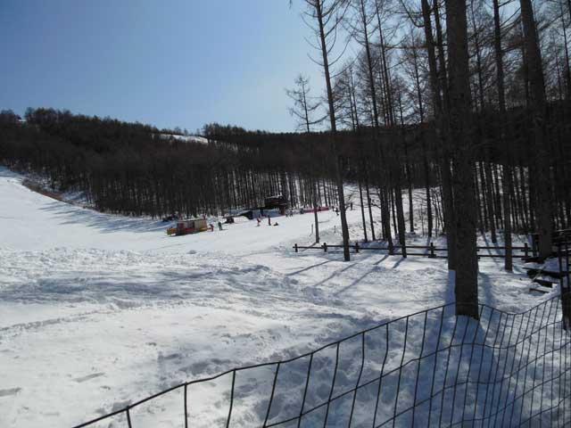 日曜に雪遊びに行ってきました_b0120492_15435854.jpg