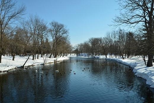 2013年2月21日(木):そろそろ池の浚渫時期[中標津町郷土館]_e0062415_19581937.jpg