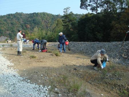 「桜の記念植樹」 in 岬町多奈川地区多目的公園_c0108460_1233326.jpg
