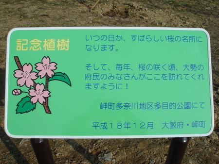 「桜の記念植樹」 in 岬町多奈川地区多目的公園_c0108460_128812.jpg