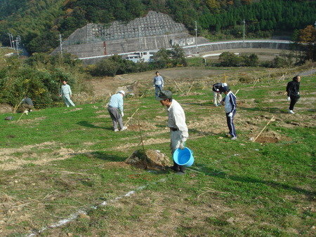 「桜の記念植樹」 in 岬町多奈川地区多目的公園_c0108460_1291768.jpg