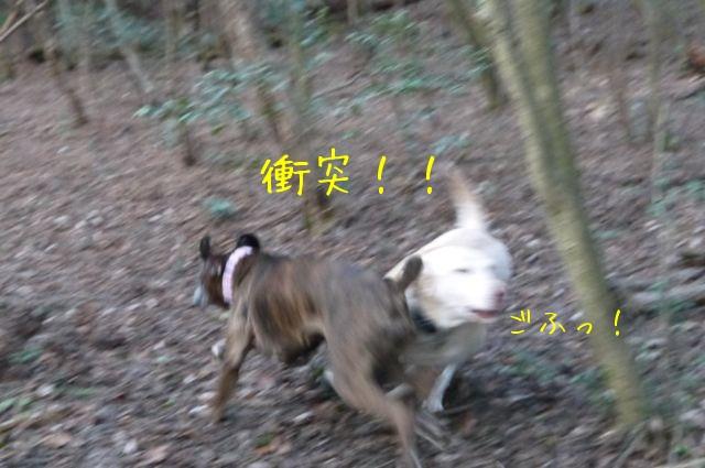 f0177261_2232341.jpg