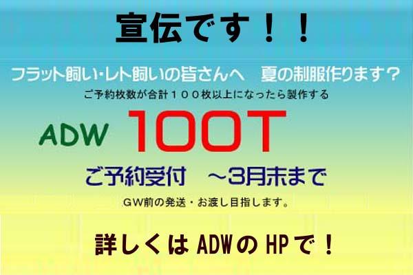 d0074388_10451238.jpg