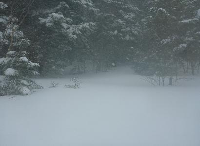 吹雪のスノーシュー_e0077899_774826.jpg