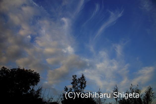 ~Refreshing cloud~_c0152400_1928298.jpg
