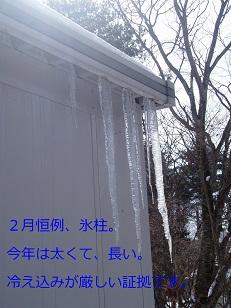 b0200310_10511754.jpg