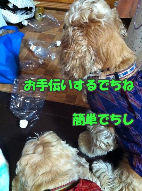 b0067012_0121970.jpg