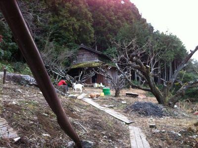 大好き!徳島。_d0136540_6263857.jpg