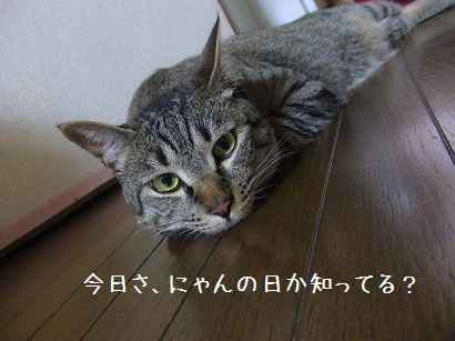 b0118850_17484233.jpg