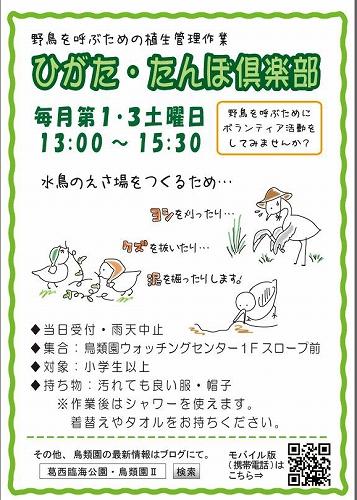 野鳥のために活動しよう!ひがた・たんぼ倶楽部_e0046474_1752328.jpg