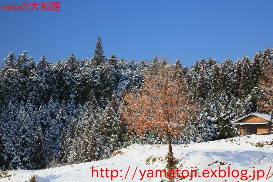 f0236776_21304352.jpg