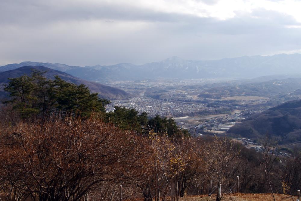 宝登山の蝋梅を撮る_c0252688_13405816.jpg