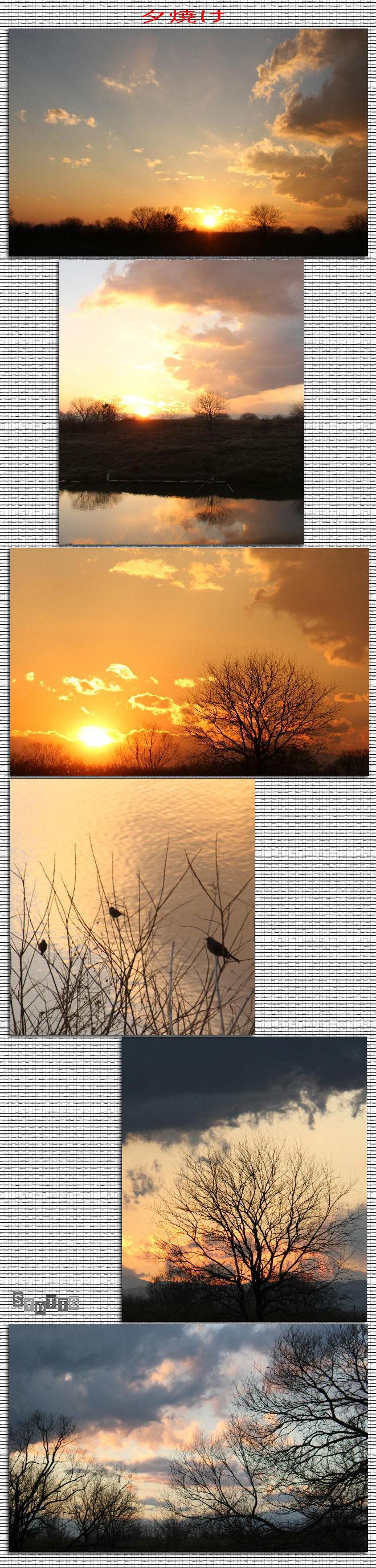 f0164592_2213345.jpg