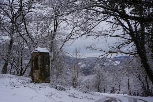 雪の森を一人で歩く_f0106597_00956.jpg