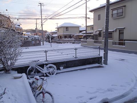 今日は雪が積もったので・・・_b0074601_14542753.jpg