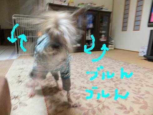 f0179203_12465749.jpg