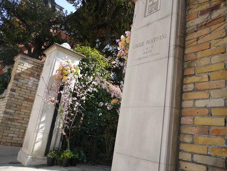 シェ松尾松濤レストラン様の装花 河津桜と春の花のパステルミックスで _a0042928_2172872.jpg