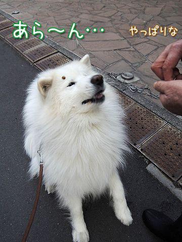 久々に真昼の決闘_c0062832_1035232.jpg