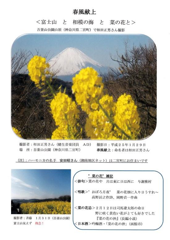 富士山 と 相模の海 と 菜の花と_e0221892_2251551.jpg