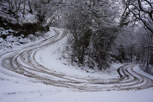 雪の森を一人で歩く_f0106597_0153982.jpg