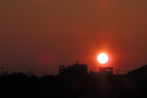 水辺のルリビタキ/今日のカワセミ&アリスイ/日の出_b0024798_18134586.jpg